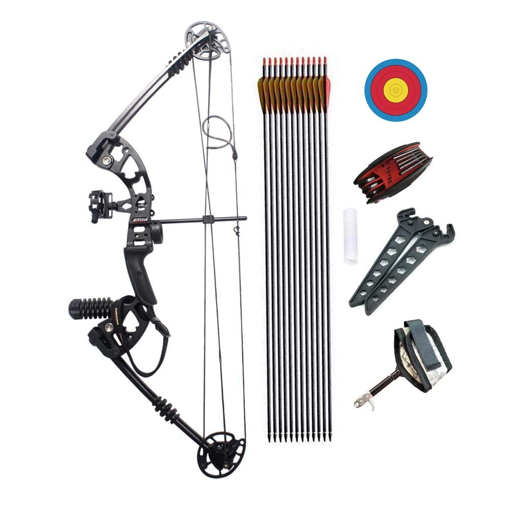 Junxing Compound Bow Right Hand and Arrows