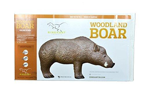 Woodland Boar 3D Target