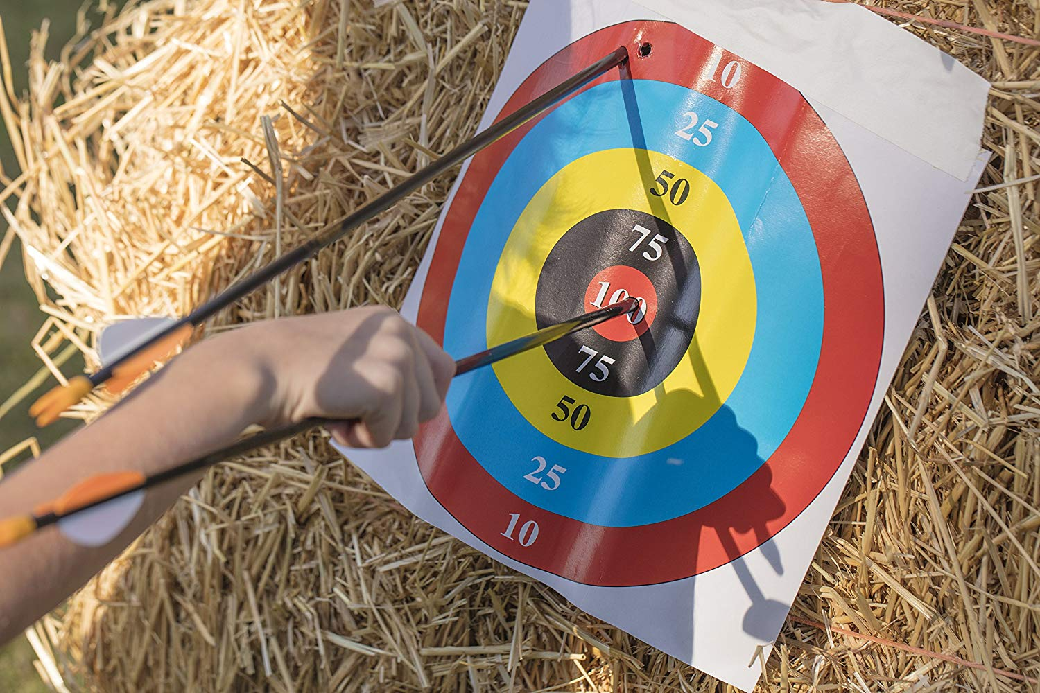 Bear Archery Youth Safetyglass Target Arrows