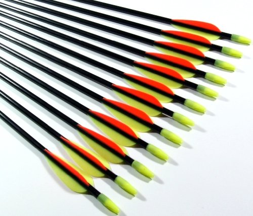 Shiny Black Fiberglass Target Arrows 34″